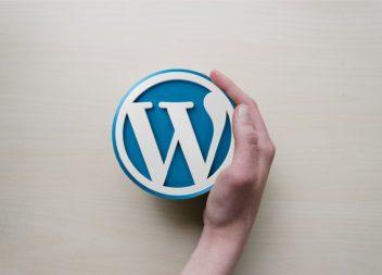 Удаляем атрибуты Type у скриптов и стилей WordPress